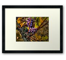 The Root Of Good Things ~ Grapes ~ Framed Print