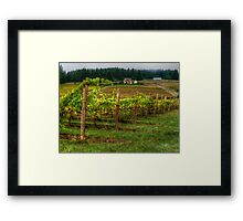 House On The Hill ~ Grape Vineyard ~ Framed Print