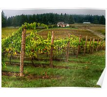 House On The Hill ~ Grape Vineyard ~ Poster