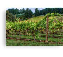 It's Where We Live ~ Vinyard Grapes ~ Canvas Print