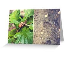 Autumn signs Greeting Card