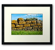 Old Dry Stone Wall at Eype Framed Print