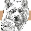 Akita Father & Son by BarbBarcikKeith
