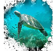honu by arteology