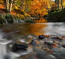 Shimna Colour by GaryMcParland