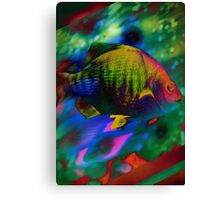 4405 Psychedelic Fish Canvas Print