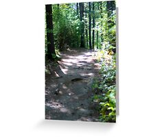 Noanet Woodlands Hiking Trail Greeting Card
