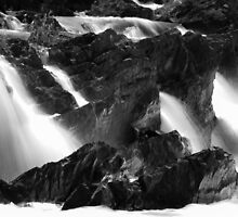 Black and White Streamers by Joshua Lais