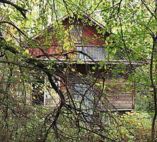 abandoned house by mrivserg