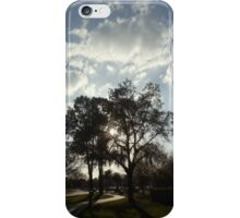 Southern Comfort iPhone Case/Skin