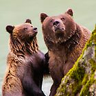 Mother and cub by Yukondick