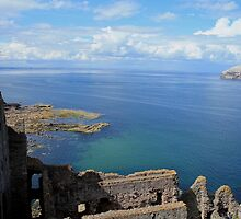 River Forth from Tantallon Castle by Pat Millar