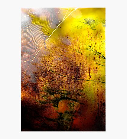 Early Autumn Web Abstract .. Photographic Print