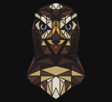 <Acquire the hawk> by Kiluvi