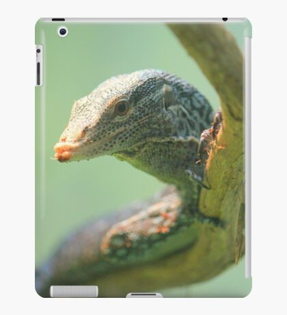 Lizard Close Up iPad Case/Skin