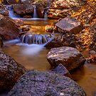 Fall in Colorado Springs by Craig Forhan