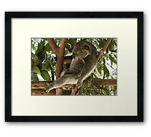Time to Chilax Framed Print