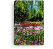 Tulip Top Gardens Canvas Print