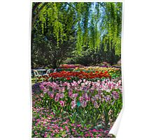 Tulip Top Gardens Poster