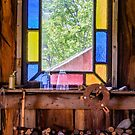 Carpenter's Shop Window by Robert Kelch, M.D.