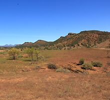 On an outback track by Bruce Reardon