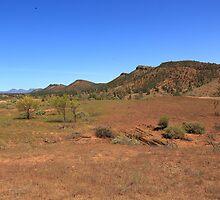 On an outback track by Bruce Reardon
