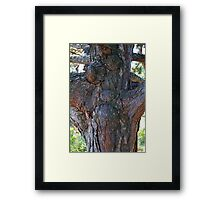Right Out of Oz Framed Print