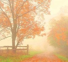those autumn days.. by JOSEPHMAZZUCCO