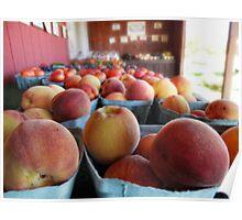 fresh fruits and veggies Poster