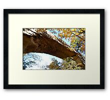 Natural Bridge, KY Framed Print