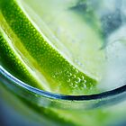Slice of Lime by Cynthia Harris