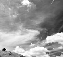 Standing among clouds  by Norman Repacholi