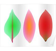 Leaves Light Art Poster