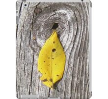 leaf shaman iPad Case/Skin