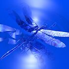 Blue Metallic Dragonfly by deleas