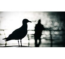 Bird and the boy Photographic Print