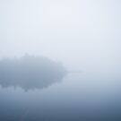 Foggy lake 2 by netza