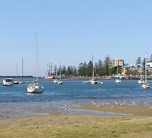 Safe Harbour! Port Macquarie, New South Wales. by Rita Blom