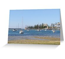 Safe Harbour! Port Macquarie, New South Wales. Greeting Card