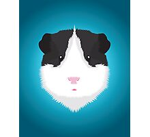Black and White Guinea Pig Photographic Print