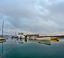 Harbour Overview 2 ~ Lyme Regis by Susie Peek