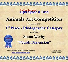 Animals- 1st Place Photography by Susan Werby