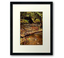 Skunk Creek Framed Print