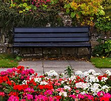 FORRES AUTUMN SEAT by JASPERIMAGE