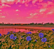 Changing Colours, Changing Season by Nira Dabush