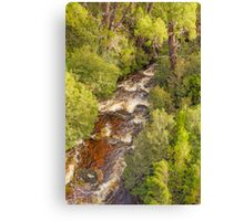 Weindorfers Forest, Cradle Mountain, Tasmania #3 Canvas Print