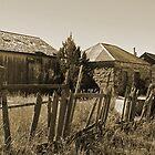 Cuervo, NM by Chet  King