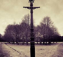 Street Light by DanButlerPhoto