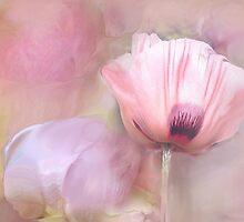 Poppy and Peony by Anivad - Davina Nicholas