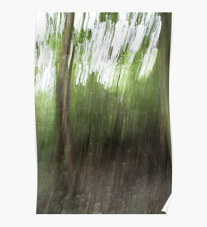 Woodland Abstract #1 Poster